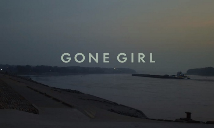 gone-girl-analise-review-pn