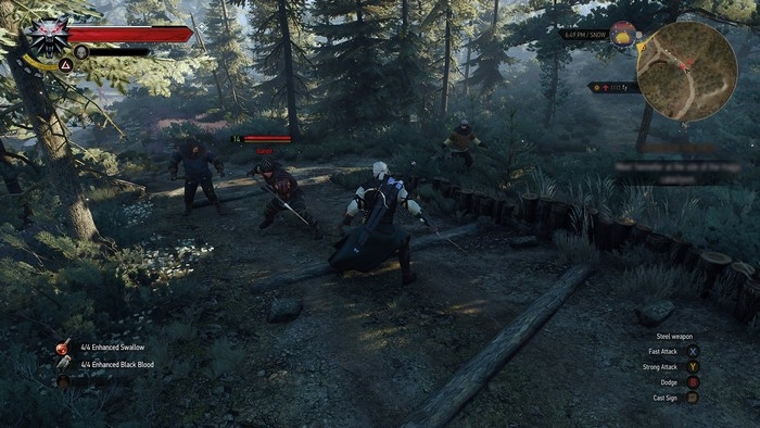 the-witcher-3-new-pics-may-pn-9-pn