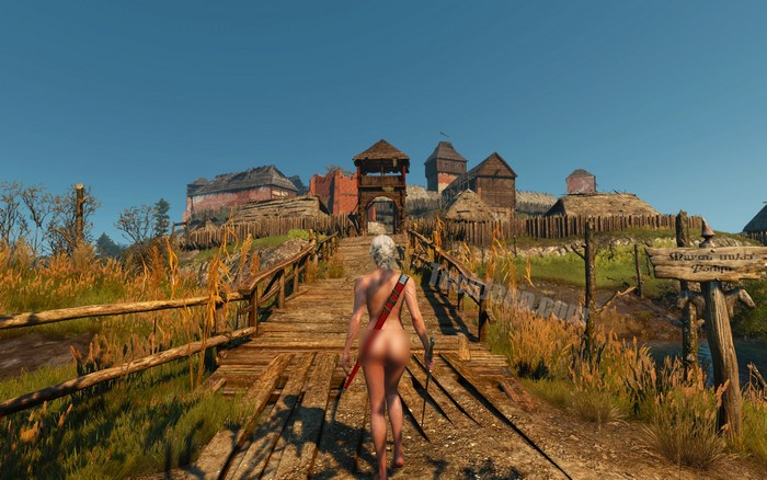 the witcher nude mod