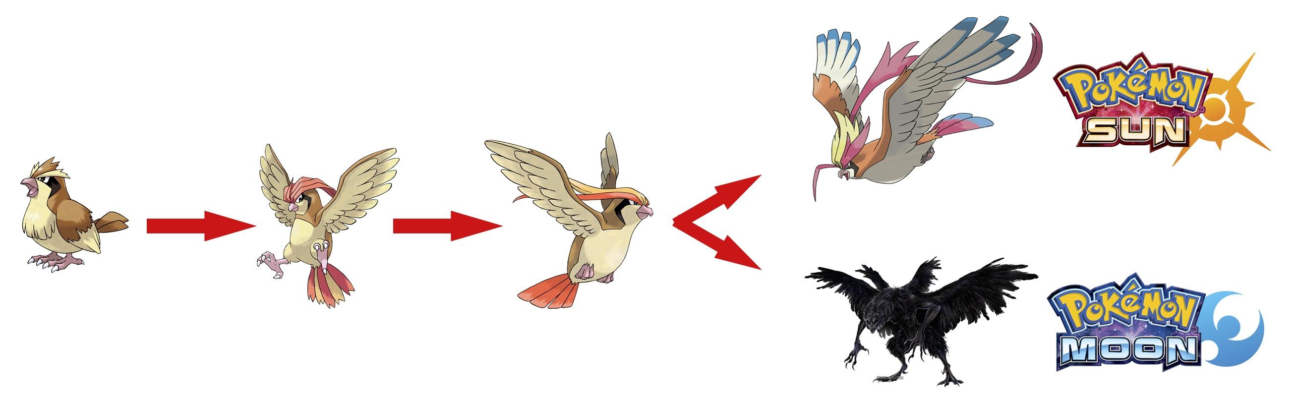 armsmy-pokemon-pidgeot-dark-souls-pn