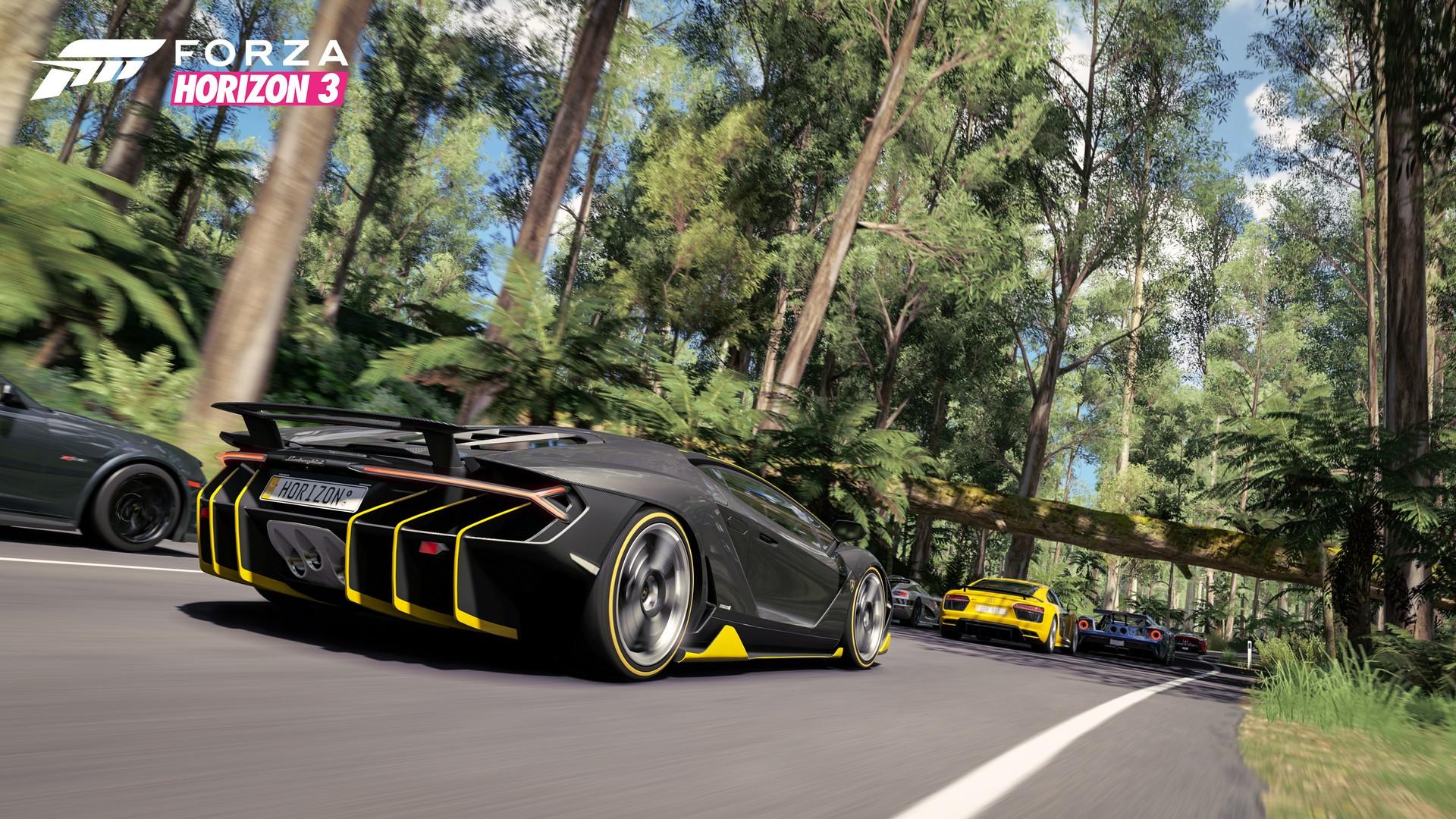 Jungle Road in Forza Horizon 3