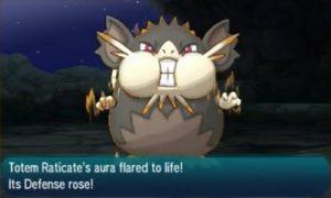 totem-raticate-pokemon-sun-moon-pn